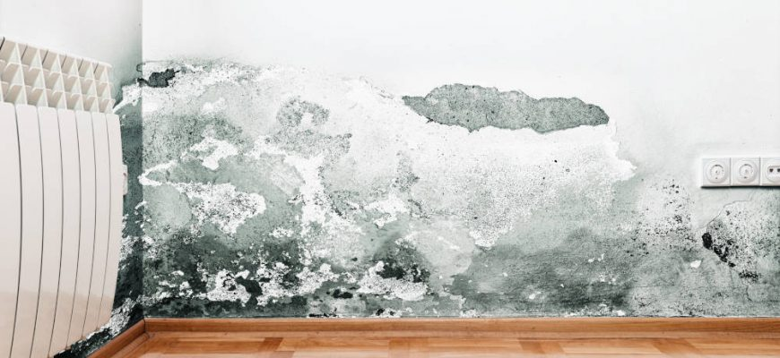 How to Prevent Mold in the Winter | Tri Span Environmental
