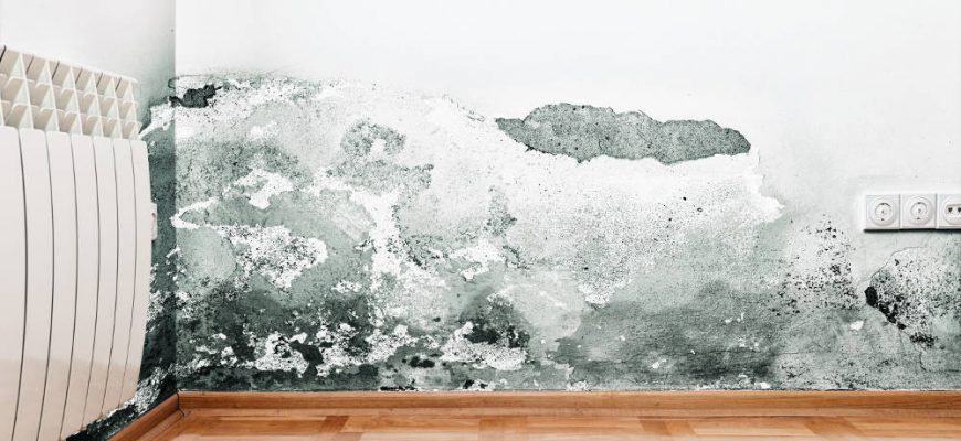 Problems with Mold and Mildew   Orange County Hazard Remediation