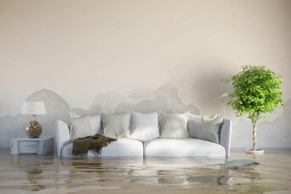 How Professional Remediation Services Handle a Basement Flood